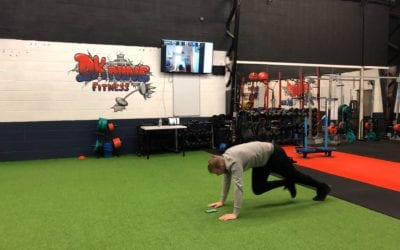 What We Are Doing At DKnine Fitness…